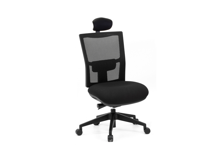 Anatome Air Ergonomic Office Chair