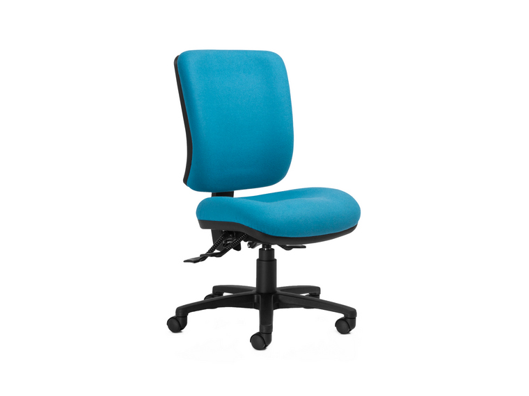 Anatome ErgoS Ergonomic Office Chair