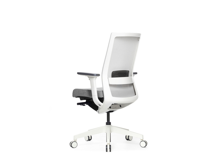 ErgoX One Ergonomic Mesh Office Chair