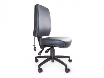 Anatome Luxury Manual Ergonomic Office Chair