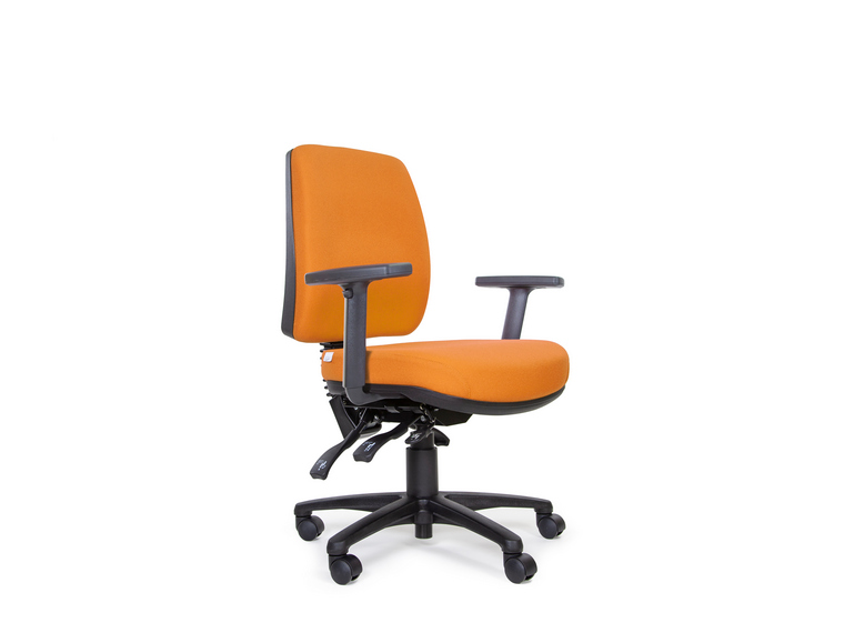 Anatome Luxury 3 Lever Ergonomic Office Chair