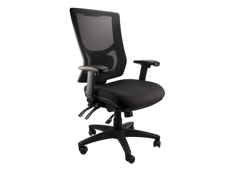 Anatome Savoy Mesh Ergonomic Office Chair