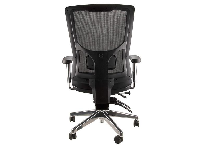 Anatome Savoy Mesh Ergonomic Office Chair