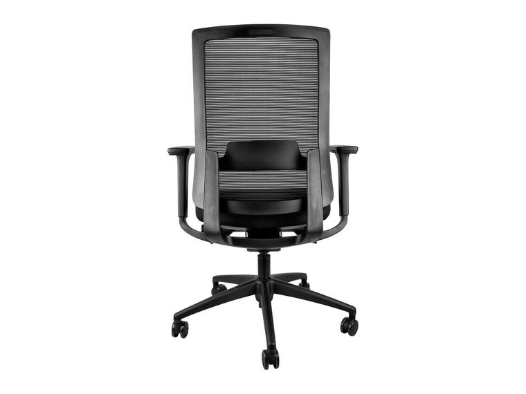 ErgoX Como Mesh Ergonomic Office Chair