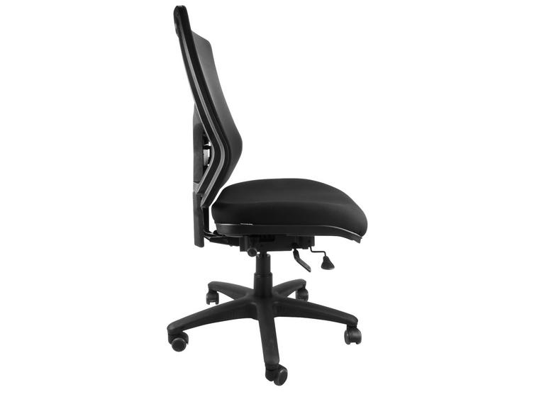 ErgoX Savoy Mesh Ergonomic Office Chair