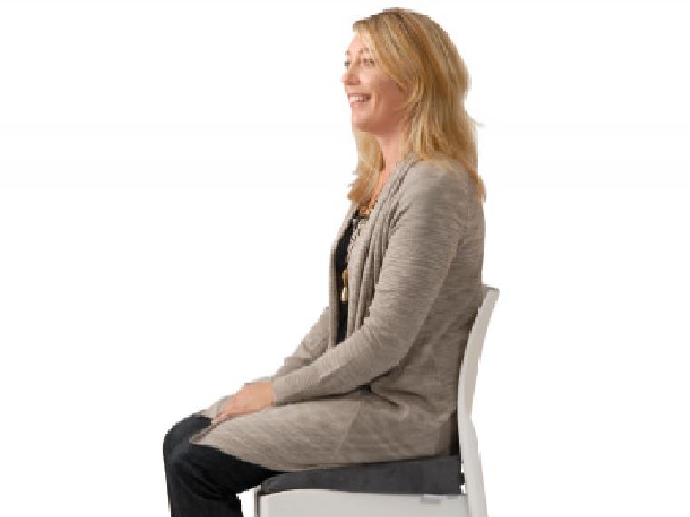 Posture Wedge